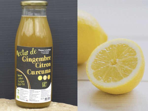 Boisson gingembre, curcuma, citron