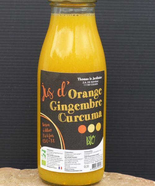 Boisson concentrée gingembre, curcuma et citron