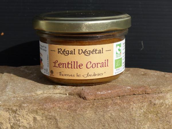 tartinevg-lentilles-corail