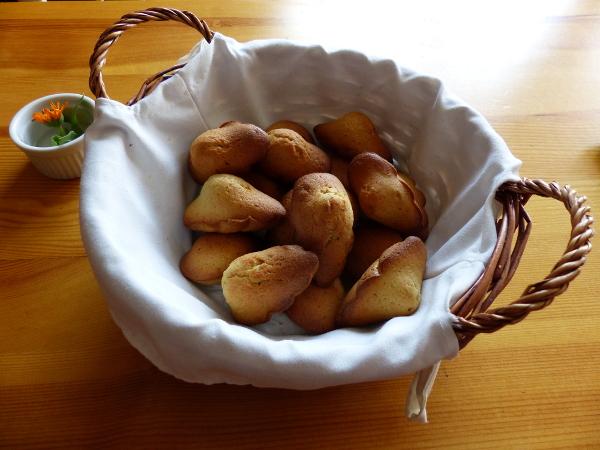 Mes madeleines...de Couiza